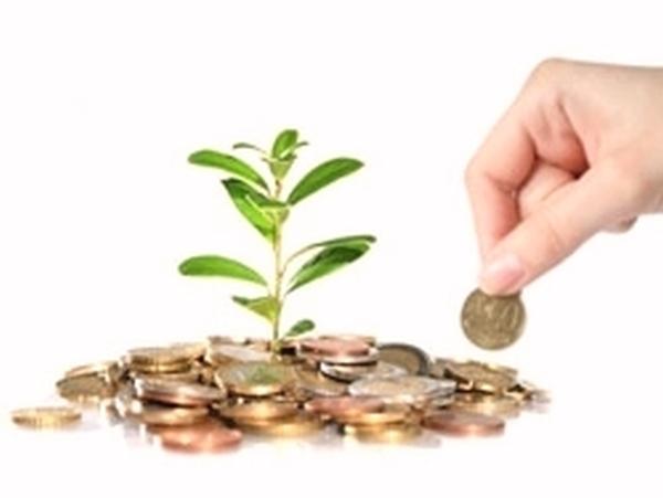 Прямые иностранные инвестиции и транснациональные компании