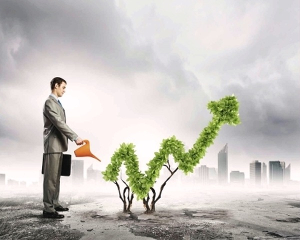 Прямые инвестиции являются точным выражением движения капитала