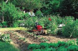 Техника для сада и огорода. Где выбирать?